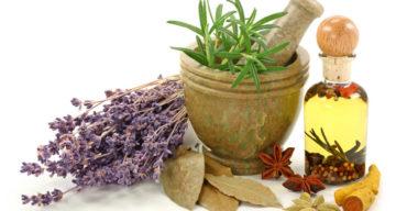7 Plantas medicinales que puedes utilizar para mejorar tu salud