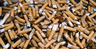 cigarro destacada